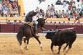 Festival Taurino - Salvaterra de Magos