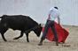 imagens da tenta na ganadaria Herdeiros António Silva