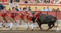 As imagens da corrida do Colete Encarnado em Vila Franca
