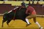 As imagens da corrida do Campo Pequeno - Moura Jr. vs Telles Jr.
