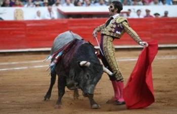 Padila e Juan del Álamo: De Pamplona para o Campo Pequeno
