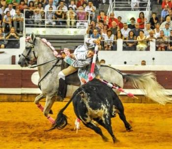 Cavaleira Ana Rita em bom plano e somando triunfos