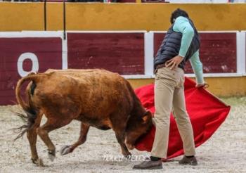 Alunos da Academia de Toureio do Campo Pequeno tentam na ganadaria de Jorge de Carvalho