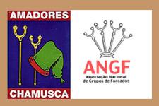 Amadores da Chamusca entram finalmente na ANGF