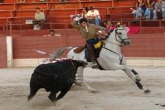 Cavaleiro Amador Paulo D´Azambuja em Maio na sua terra