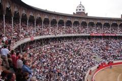 68,8% dos espanhóis estão contra a proibição das touradas
