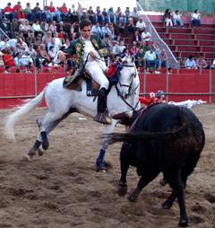 Marcelo Mendes recebe hoje troféu em Sousel e toureia segunda em Mourão