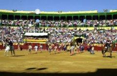 Feria del Caballo en Jerez de la Frontera 2010