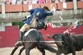 Reportagem fotográfica da corrida de dia 31 de Julho em Idenha-a-Nova