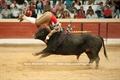 Reportagem fotográfica da corrida das Festas de Santiago no dia 6 de Agosto de 2011