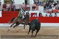 Reportagem fotografica de Alcochete - XXIX Concurso das Ganadarias Associadas