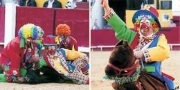 Sugestões para um Fim de Semana de Carnaval Taurino