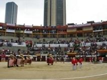 Feira do Cavalo em Jerez de la Frontera