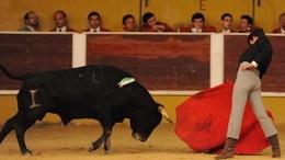 Pedro Cunha triunfa no 1.º Ciclo Nacional de Novilhadas das Escolas de Toureio