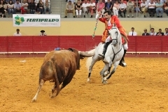 Luis Rouxinol repete triunfo na praça Arena D´Évora