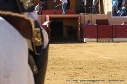 Amadores de Moura, Amareleja e Póvoa de S. Miguel em competição dia 14 de Agosto