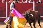 Imagens do Festival Taurino em Vila Boim dia 6 de Outubro
