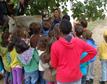 Ana Batista Visitou Ontem a HARPA