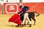 Escolas de toureio tentaram na ganadaria São Torcato