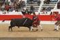 Imagens da corrida de Alcochete