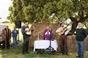 Tradicional Festa Campera na Herdade da Manchoa