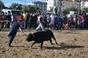 Imagens dos Festejos Populares do Pinhal Novo