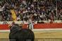 Imagens da 3ª corrida das festas do Barrete Verde de Alcochete