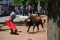 Festejos populares taurinos de Assumar