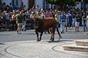 As imagens da Festa dos Capuchos