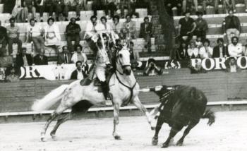 A primeira de Bastinhas no Campo Pequeno - 2 de Fevereiro de 1969
