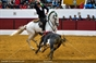As imagens da corrida em Sobral de Monte Agraço