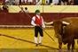 Imagens da corrida de toiros do Campo Pequeno em homenagem ao emigrante
