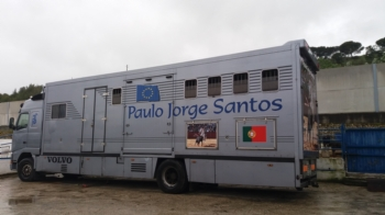 Paulo Jorge Santos quer dar um novo rumo à sua carreira