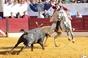 As imagens da corrida de Sobral de Monte Agraço