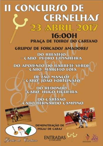 Concurso de cernelhas e demonstração de pegas no Cartaxo