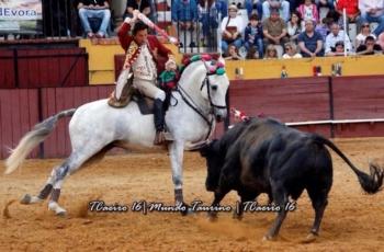 Cavalo Evasivo vence prémio na Chamusca