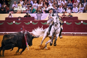 António Ribeiro Telles: O mais clássico dos cavaleiros portugueses na Corrida TVI